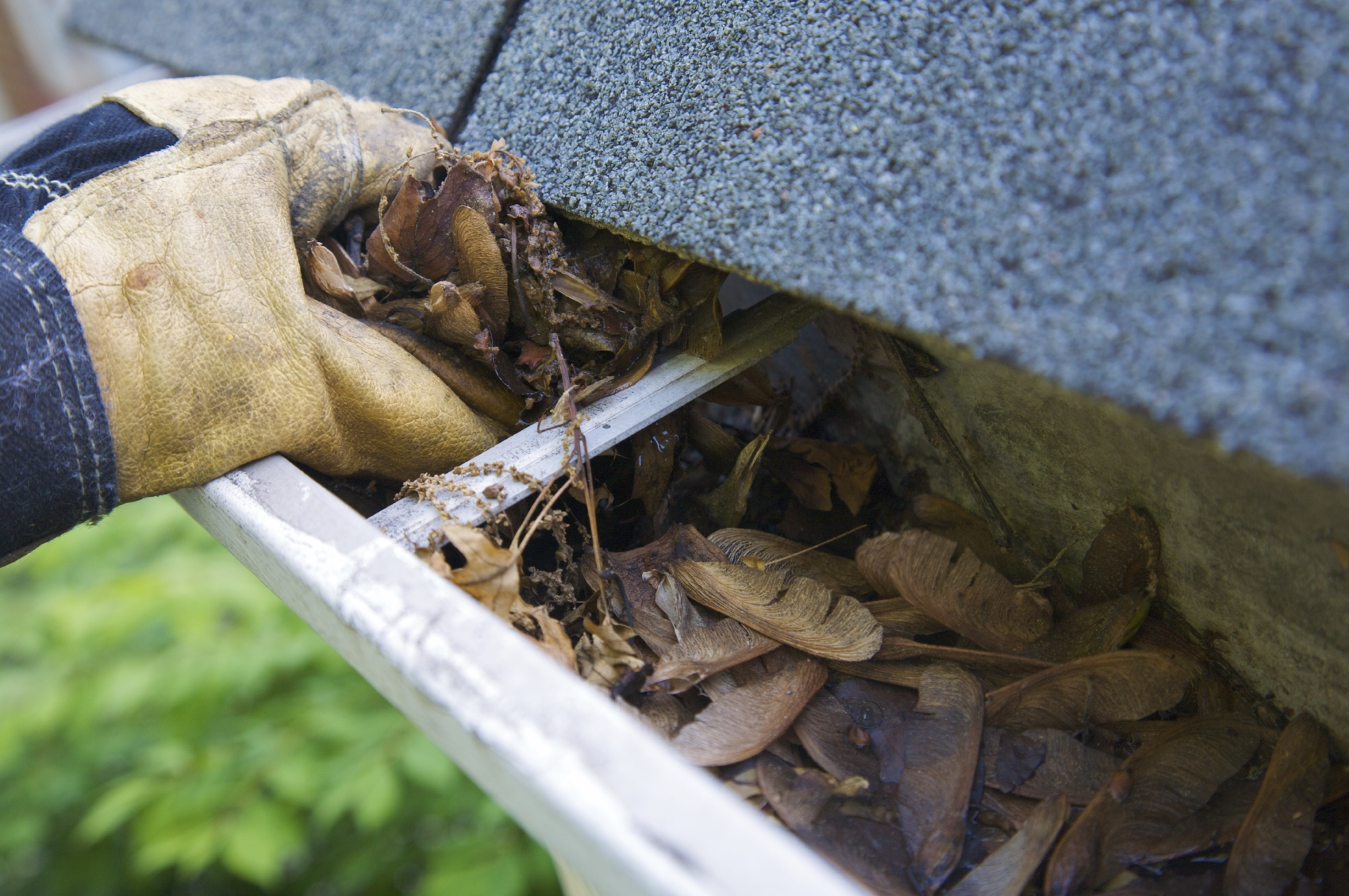 Image result for clean gutters